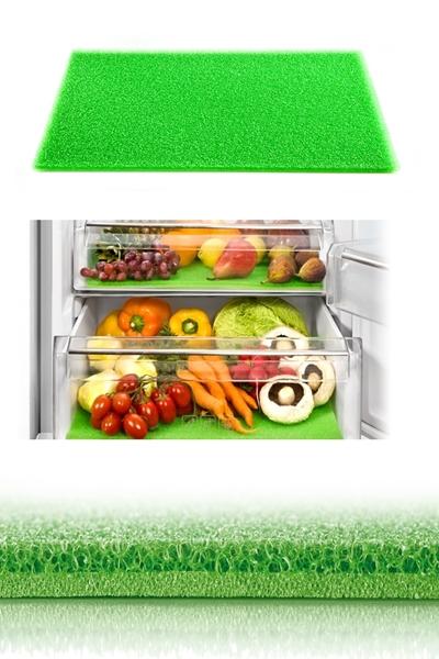 Tescoma 897005 Hűtőszekrénybe alátét
